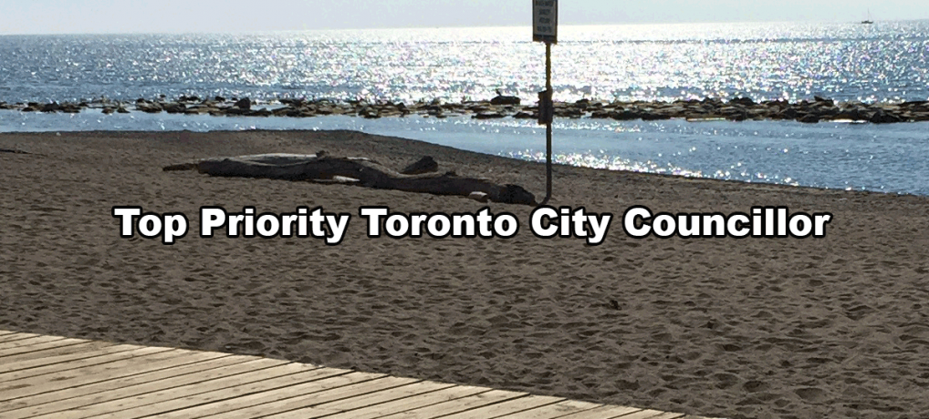 Top Priority Toronto City Councillor